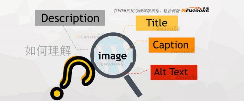 WordPress:图片的Title, Alt, Caption及Description?-新龙资讯原创